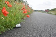 Die weggeworfene Kaffeetasse, die an der Wegseite unter Mohnblume liegt, blüht wie Stockfotos