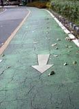 Die weiße Pfeilmalerei auf dem grünen Radweg es ist eine Abteilung einer Straße, die mit gemalten Linien abgehakt wird Stockfotografie