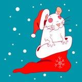 Die weiße Ratte in einer neues Jahr ` s Kappe und einer Socke Stockfoto