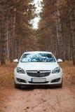 Die weißen Farben des Autos, im Wald im Fall draußen Lizenzfreie Stockfotos