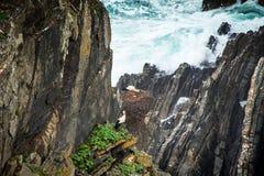 Die weißen Störche, die hoch in den Klippen nisten, fahren die Küste entlang Lizenzfreie Stockfotos