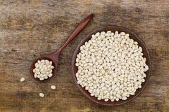 Die weißen Zwergbohnen, auch genannt weiße Bohne, Perlen-Bohne, Boston sind Lizenzfreie Stockfotografie