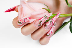 Die weibliche Hand, die ein rosa hält, stieg stockfoto