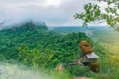 Die Weichzeichnung des grünen Waldes, des nebeligen Forest Hills bei Phu Tok, der Pfropfen Kan-Provinz Thailand, des Strahlnlicht Lizenzfreies Stockfoto