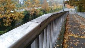 Die Weise in den Herbst Stockfoto