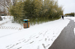 Die Weise im Schnee Lizenzfreies Stockfoto