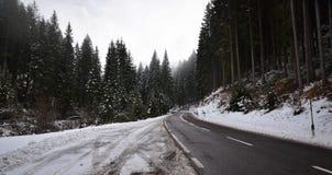 Die Weise zu den Dolomit stockfotografie