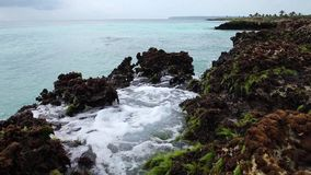 Die Wellen des Ozeans, die auf dem Riffufer brechen stock video footage