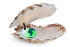 Die Welt ist Ihre Auster lizenzfreie stockfotos