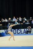 Die Weltspiele 2017 in Breslau, Polen Lizenzfreie Stockbilder