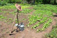 Die Werkzeuge des Gärtners im Garten Stockbilder