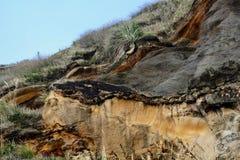 """Die """"wild† Westküste von Neuseeland: schroffe Küstenklippen geformt durch starke Prozesse der Abnutzung und der Sedimentbild stockfoto"""