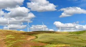Die Windparkturbinen, die auf Hügel weiß sind, kontrastieren grünes Gras und blauen Himmel, wa Stockbild