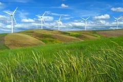 Die Windparkturbinen, die auf Hügel weiß sind, kontrastieren grünes Gras und blauen Himmel, wa Lizenzfreie Stockfotografie