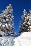 Die Winter-Geschichte Lizenzfreies Stockfoto