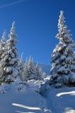 Die Winter-Geschichte Stockfoto