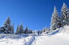 Die Winter-Geschichte Lizenzfreies Stockbild