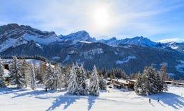Die Winterlandschaft Lizenzfreies Stockbild