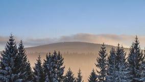 Die Winterlandschaft Lizenzfreie Stockfotografie