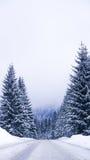 Die Winterstraße Lizenzfreie Stockfotografie