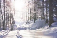 Die Winterstraße Drastische Szene Karpaten-Ukraine stockbilder