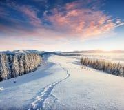 Die Winterstraße Drastische Szene Karpaten, Ukraine, Europa stockbild