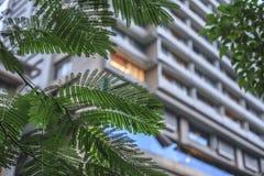 die Wohnung in der Stadt Lizenzfreie Stockbilder