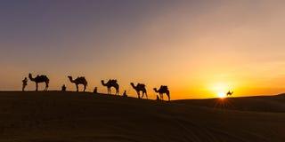 Die Wohnwagen Thar-Wüste, Indien 2015 lizenzfreie stockbilder