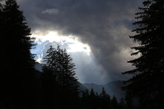 Die Wolken über dem Wald lizenzfreie stockfotos