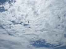 Die Wolken im Himmel Lizenzfreie Stockbilder