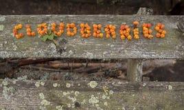 Die Wortschellbeeren, durch Schellbeeren auf hölzerne Bretter geschrieben Lizenzfreie Stockfotografie