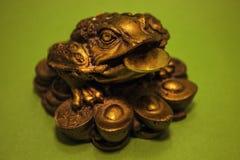 Die Zahl der orientalischen Kröten lizenzfreie stockfotografie