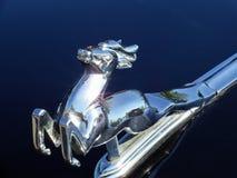 Die Zahl der Rotwild auf der Haube des Auto ` GAZ ` Lizenzfreie Stockfotos