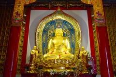 Die Zahl von Buddha des Feingolds Kumarajiva-Tempels Lizenzfreie Stockfotos