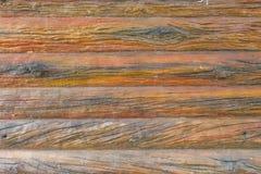 Die Zementwand ist ein Baummuster Lizenzfreie Stockfotos