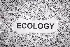 Die zerrissene Nahaufnahme bessert und Bänder des Papiers mit dem Wort ÖKOLOGIE aus Stockfoto