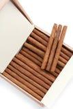 Die Zigarren sind in einem Kasten Stockfotografie