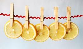 Die Zitrone-Scherben lizenzfreie stockbilder