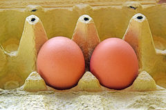 Die zwei Eier Lizenzfreie Stockfotografie