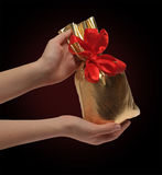 Die zwei Hände der Frauen halten eine Tasche der Geschenke Lizenzfreie Stockfotografie