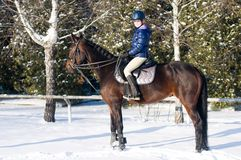 Dieci anni di ragazza che monta un cavallo nell'inverno Fotografia Stock Libera da Diritti