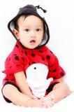 Dieci mesi di neonato di Asain Fotografie Stock