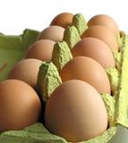 Dieci uova Immagine Stock