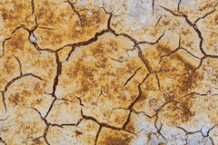 Died and cracked soil Royalty Free Stock Photo