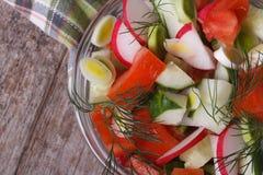 Dieetsalade met tomaat, radijs, komkommer hoogste mening Stock Fotografie