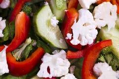 Dieetsalade van gesneden groenten - voedzame en gezonde FO royalty-vrije stock foto
