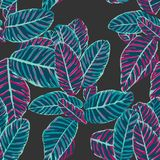 Dieffenbachia leaf pattern design with multicolor pattern in repeat stock illustration