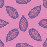 Dieffenbachia ultra violet tropical leaf seamless pattern. Royalty Free Stock Photo