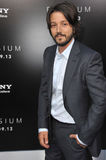 Diego Luna Royalty Free Stock Images