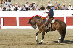 Diego Ventura, bullfighter on horseback spanish Stock Image